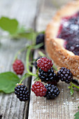 Blackberry tart and fresh blackberries
