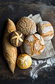 Arrangement of baguettes, bread, wholemeal bread, a white bread roll and a poppy seed roll