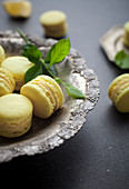 Zitronen-Macarons
