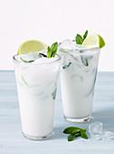 Kokos Moquito in 2 Gläsern