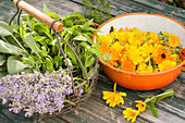 Freshly picked tea herbs: lavender, sage, lemon verbena and marigolds