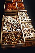 Frisch gesammelte Pilze vom Markt in Spankisten