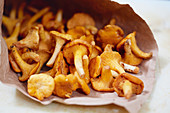 Fresh chanterelle mushrooms in a paper bag