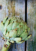 Artichoke with water drops