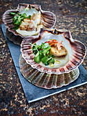 Scallops with bacon, hummus and watercress