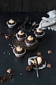 Chocolate and peanut cupcakes