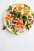 Hähnchen-Papaya-Salat