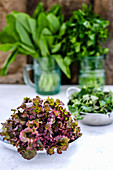Bowls of lollo rosso lettuce