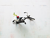 A symbolic image for salads: radishes on a toy bike