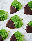 Mint leaves dipped in chocolate