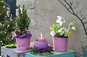 Weihnachts-Arrangement pastellfarben im Shabby-Chic