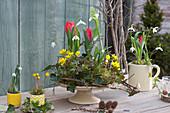 Tortenplatte mit Winterlingen, Schneeglöckchen und Tulpen
