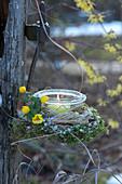 Einmachglas als Windlicht mit Blüten vom Winterling