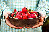 Hands holding bowl of fresh strawberries