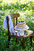 Cake in a garden with coconut sponge, mascarpone and berries