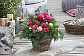 Weihnachtsgesteck mit Rosen im Korb