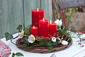Adventskranz mit Blüten der Christrose und roten Beeren