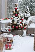 Fichte mit roten und goldenen Kugeln als lebender Weihnachtsbaum