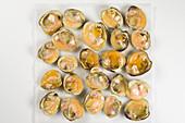 Fresh clams, halved