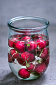 Radishes in a glass of water