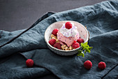 Raspberry ice cream with soy buttercream and coconut brittle