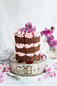 Chocolate layer cake with blackberry buttercream filling