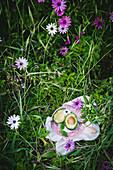 Zwei Avocadohälften auf Teller im Gras