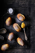 Madeleines with lemon curd and icing sugar, dark background