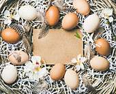 Natural colored eggs, tender almond blossom flowers and feather in basket