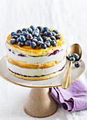 Ice cream cake with yoghurt, lemon curd and blueberries