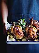 Roast spring chickens with a brioche stuffing on fennel and onions