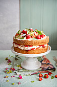 Summer cake, genoise sponge with strawberries soaked in Pimms with mint and lemon, cucumber ribbons and creamy mascarpone filling