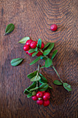 Two sprigs of lingon berries