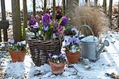 Frühlings-Arrangement im Schnee am Gartenzaun
