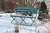 Bank im verschneiten Garten