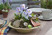 Schale mit Krokus und Blaustern als Tischdeko