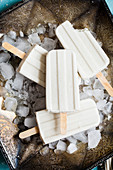 White popsicles on metal tray with ice