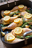 Chicken legs with lemons and rosemary