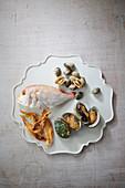 Seebrasse, Muscheln, Abalone und getrockneter Fisch (Aufsicht)