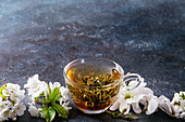 Glass cup of hot green tea with spring flowers white magnolia and cherry blooming branches over dark blue texture background
