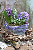 Frühlings-Schale mit Glockenblume und Hyazinthe