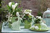 Weiß-grünes Oster-Arrangement