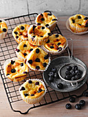 Käsekuchen-Muffins mit Blaubeeren (Low Carb)