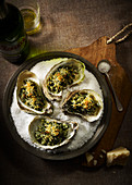 Shucked oysters prepared rockefeller with salt and beer