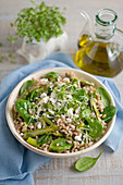 Lukewarm spelt salad with spinach, green asparagus, green beans and feta