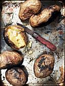 Ofenkartoffeln auf einem Backblech