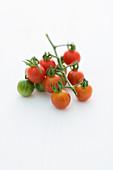 Wildtomate Humboldtii (Tomatensorte)