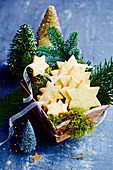 Christmas star biscuits with moss and pine sprigs