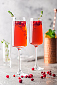 Colorful Red exotic alcoholic cocktail in champagne glasses