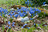 Osternest im Frühlingsgarten
